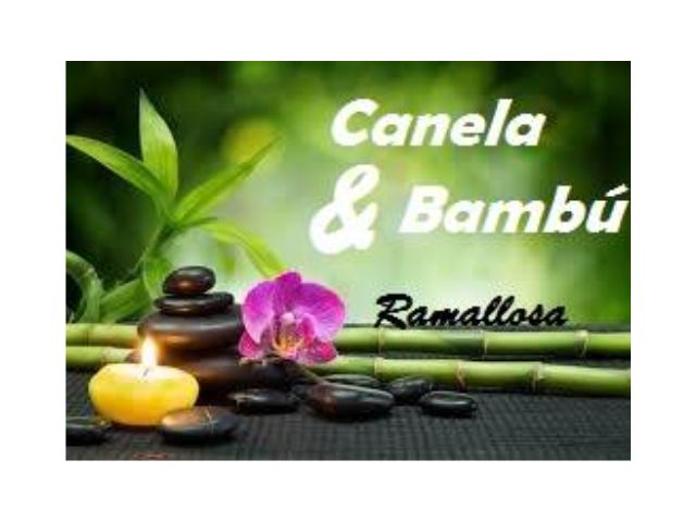 canelaybambu_logo