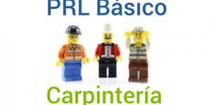 Curso PRL Básico y Carpintería 2017